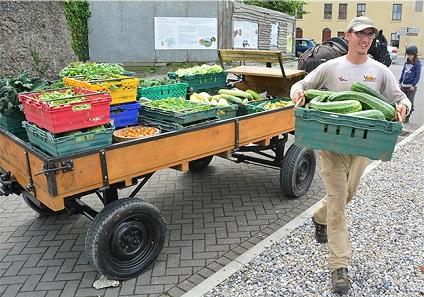 veg delivery web