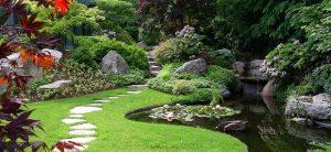 jenkinson landscape garden image
