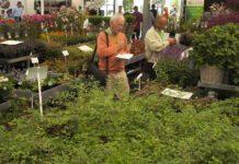 Plantarium-noviteiten
