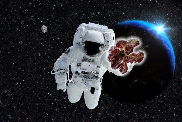 A man in space holding suttons.