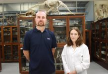 ICL embark on four-year seaweed project.