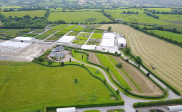 View from above of a nursery
