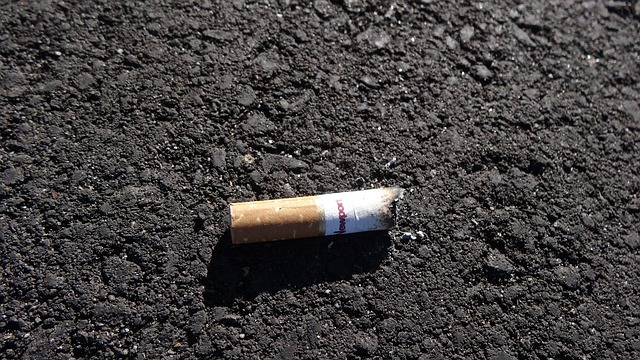cigarette-butt. Image by Michael Webb from Pixabay