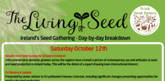 The Living Seed - Day by Day Breakdown programme