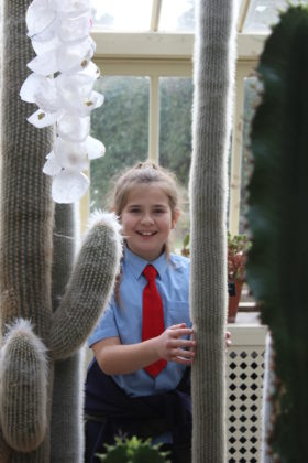 """Pictured is Ruby Gill of St. Oliver Plunket's, who showed no fear of the """"furry"""" cacti in the Dessert Glass House of the National Botanical Gardens! The students got to explore the grounds, dig in to a planting workshop, and receive new seeds to bring back to their school. The school also received a sun bubble greenhouse for their own school garden as part of their 2019 Incredible Edibles prize. Visit www.incredibleedibles.ie to register today!"""