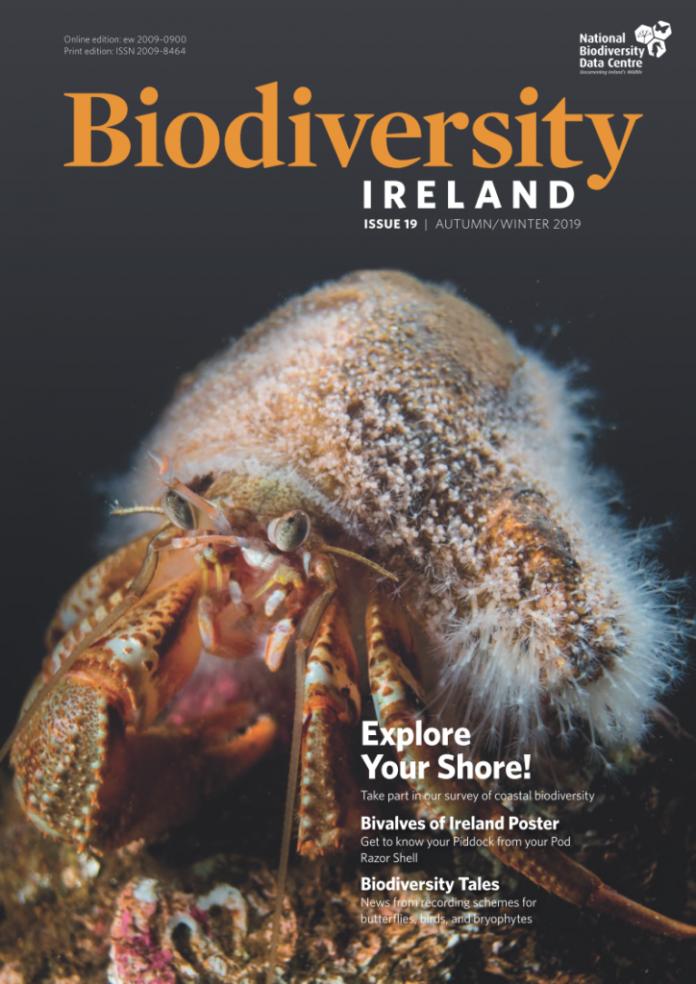 Biodiversity-Ireland-Issue-19-WEB-724x1024